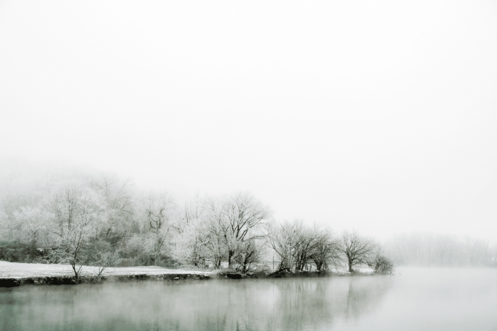winter photo print of frozen treeline that appears to melt and merge with the water