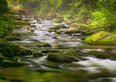 peaceful rocky lush green stream photo for ijams nature center