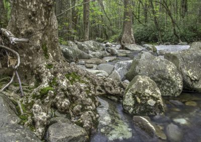 landscape art photo mountain stream with rocks