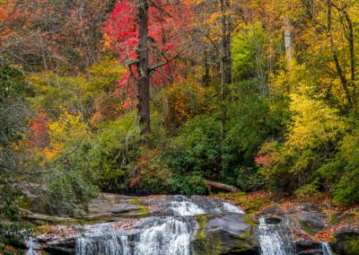 water wall art of autumn forest with multiple small waterfalls