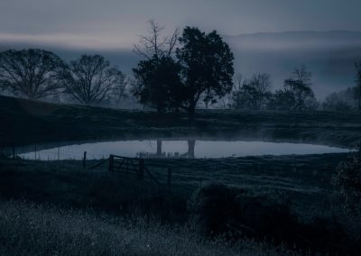 water wall art photo of small pond at near dark with fog