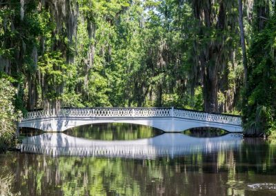 water wall art of white ornate bridge over water with trees and spanish moss around