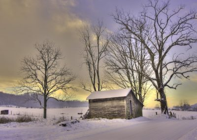winter wall art print of tiny rustic shed in snow covered ground with bare trees